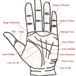 palm-reading-diagram